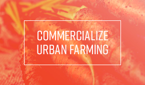 StageW_commercialize_urban_farming